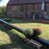 Sadzenie dębów przy Studzience Św. Ottona z Bambergu w Cerkwicy dla upamiętnienia…