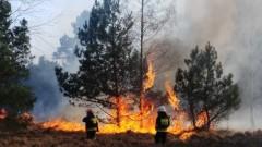 Na terenie Regionalnej Dyrekcji Lasów Państwowych w Szczecinie odnotowujemy najwyższy stopień zagrożenia pożarowego