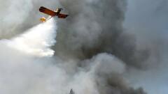 Średnie zagrożenie pożarowe w lasach RDLP Szczecin