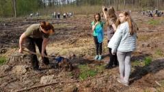 To już w sobotę 13. kwietnia -  największe sadzenie lasów w Polsce będzie w okolicach Szczecina