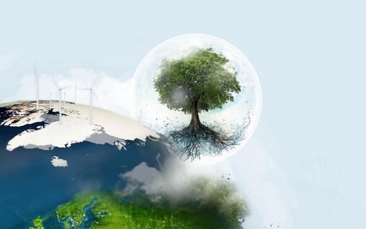 Czy w 2021 roku będziemy budować bardziej ekologicznie?