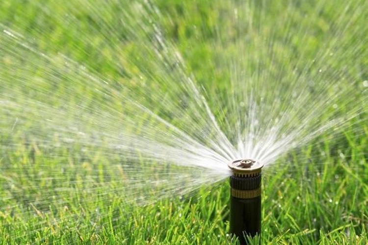 Jak podlewać ogrody?