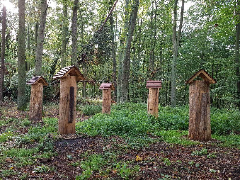 Las pachnący miodem.   Światowy Dzień Pszczół