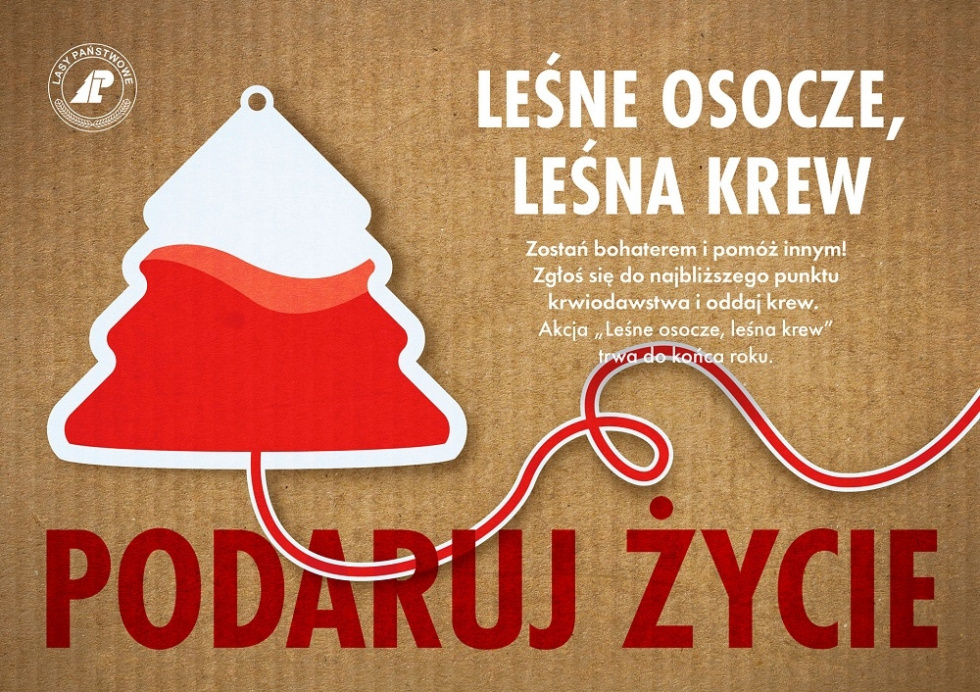 Leśne osocze, leśna krew...    Leśnicy z terenu RDLP Szczecin oddają krew w ramach ogólnopolskiej akcji