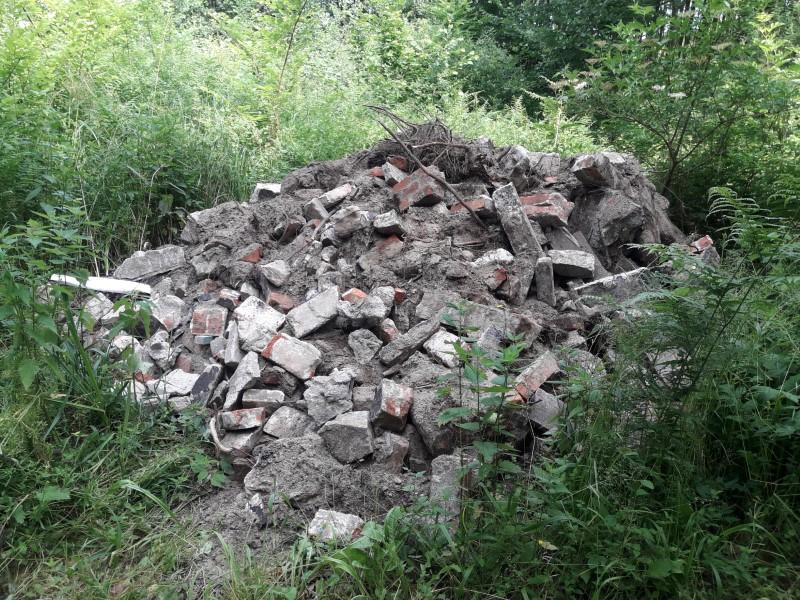 Śmieci z lasu trafiły na właściwe miejsce
