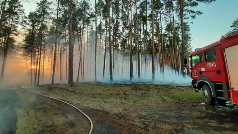 Średnie zagrożenie pożarowe na terenie RDLP Szczecin
