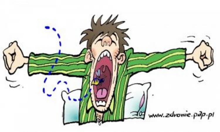 Uczulenie na jad owadów ma swoje konsekwencje w psychice