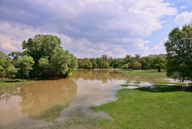 W Polsce mamy suszę. Ulewy i burze nie poprawiają sytuacji