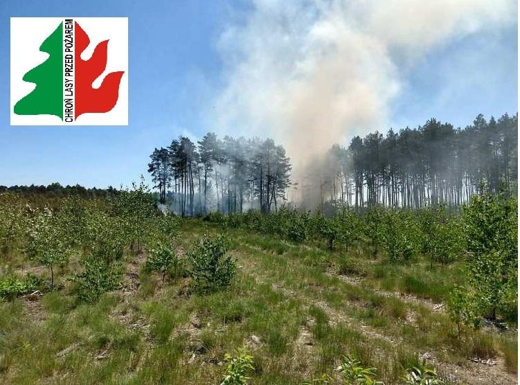 Wysokie zagrożenie pożarowe