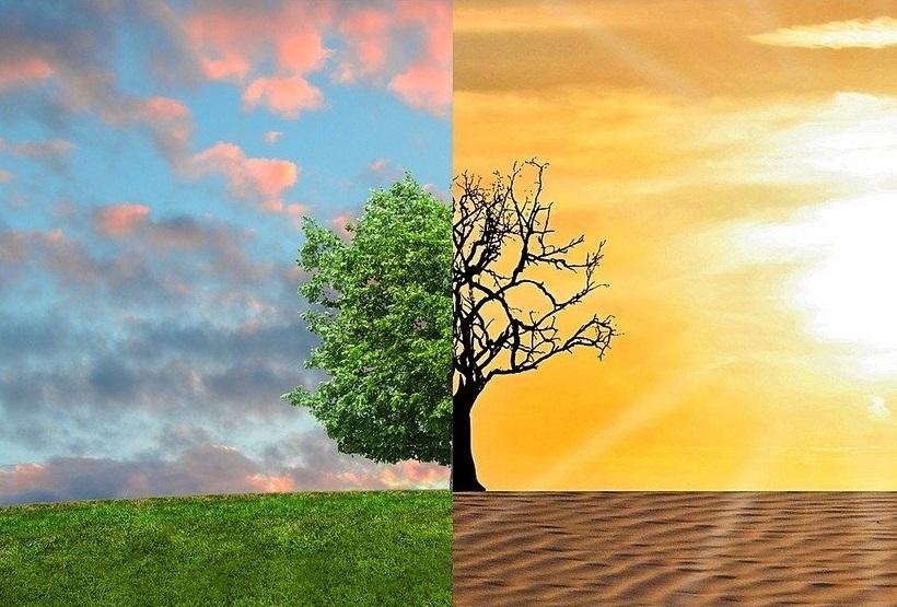 Zmiana zaczyna się od nas. Każdy może przeciwdziałać globalnemu ociepleniu