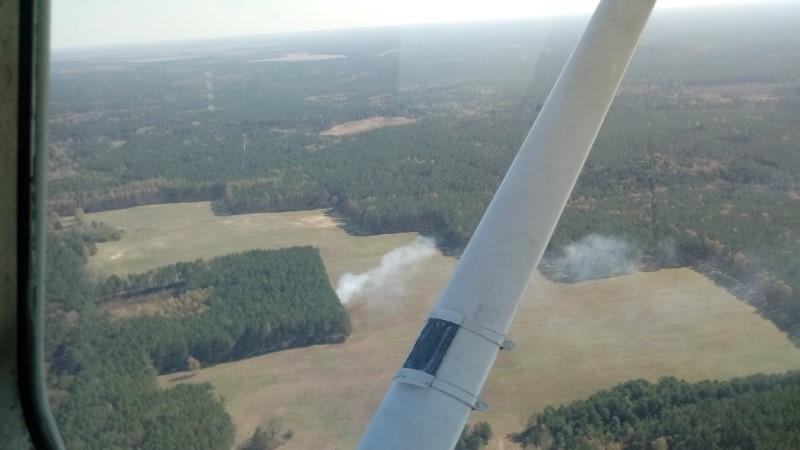 Pożary w lesie:  Leśnicy latają samolotami
