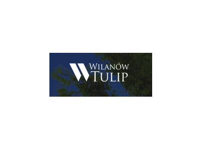 Wilanów Tulip