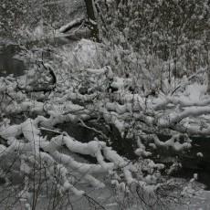 Zima w obiektywie Jana Majora